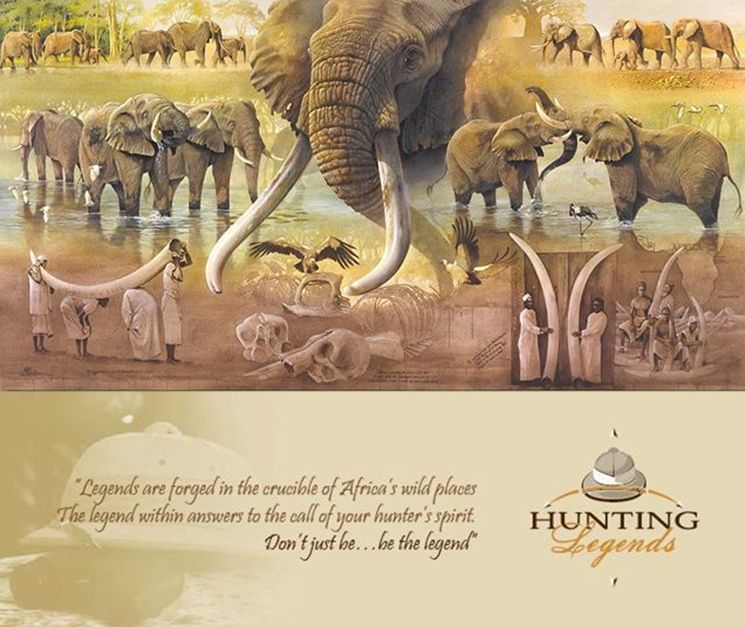 Hunter profiles elephant(2)